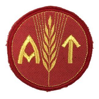 Original WWII Norwegian 'Arbeids-Tjensten' female labour service insignia