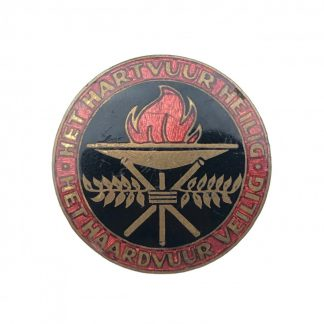 Original WWII Dutch N.S.V.O. pin