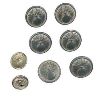 Original WWII Dutch 'Schalkhaar' police buttons