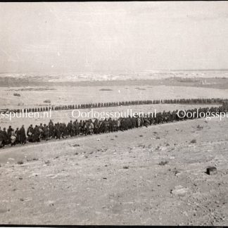 Original WWII British photo 'Afrikakorps prisoners in the desert'