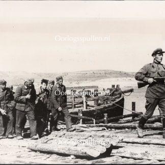 Original WWII Russian photo - German prisoners near Stalingrad