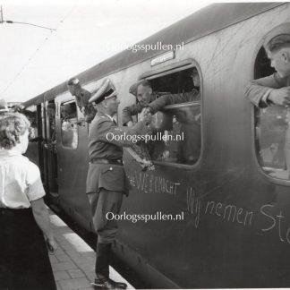 Original WWII Dutch Waffen-SS volunteer photo