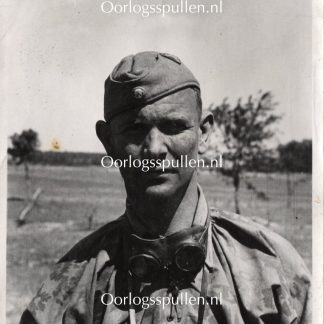 Original WWII German Waffen-SS portrait photo - Tarnjacke