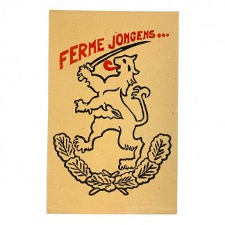 Original WWII Dutch 34. SS-Freiwilligen-Grenadier-Division Landstorm Nederland recruitment leaflet